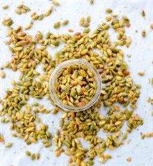 Chile Lime Seasoned Pepitas (Pumpkin Seeds)