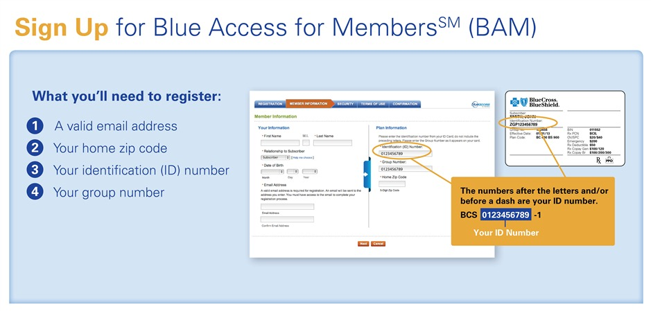 Blue Acces for Members